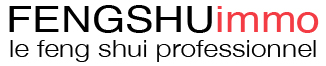 Feng shuimmo, feng shui professionnel